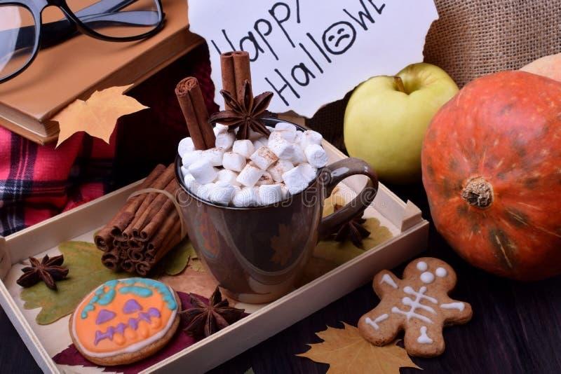 Varm choklad med marshmallower, anis och kanel i en råna på ett trämagasin fotografering för bildbyråer