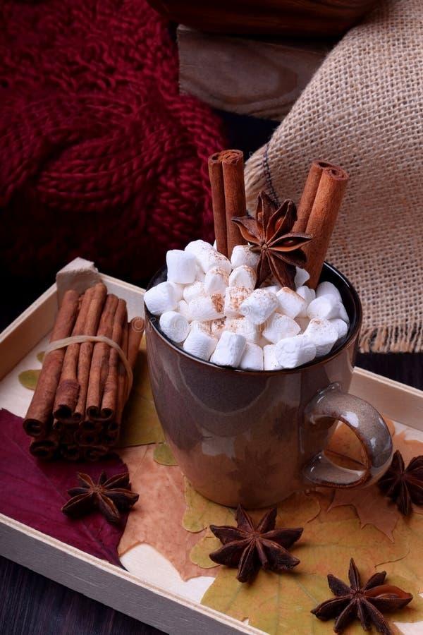 Varm choklad med marshmallower, kanel och anis royaltyfria bilder