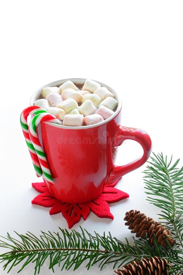 Varm choklad med mini- marshmallower royaltyfria bilder