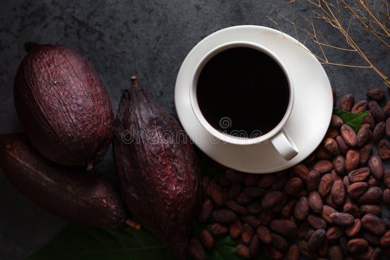 Varm choklad och kakaofröskidan klippte exponering av kakaofrö på mörk flik fotografering för bildbyråer