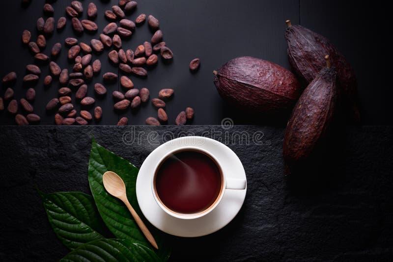 Varm choklad och kakaofröskidan klippte exponering av kakaofrö på mörk flik royaltyfri bild