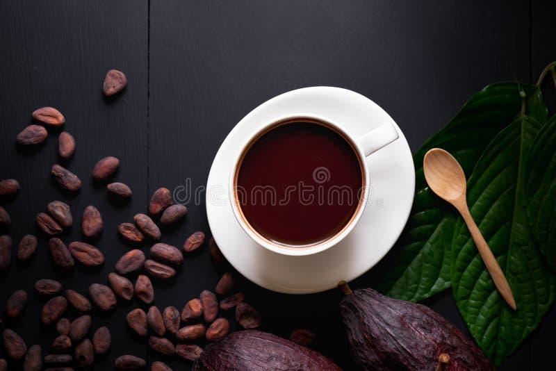 Varm choklad och kakaofröskidan klippte exponering av kakaofrö på mörk flik royaltyfria bilder