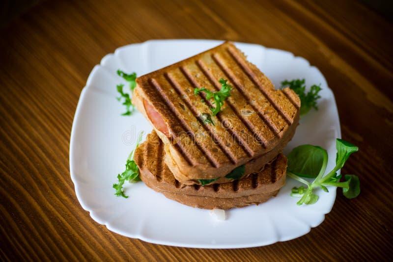 Varm dubbel smörgås med grönsallatsidor och som stoppar i en platta royaltyfria foton