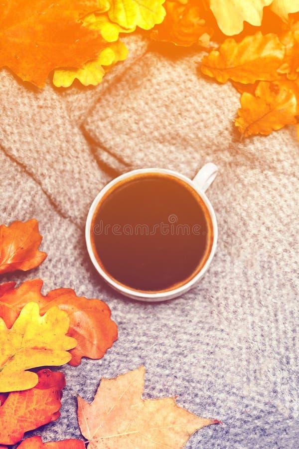 Varm kaffekopp med höstsidor över träbakgrund Abstra arkivfoto