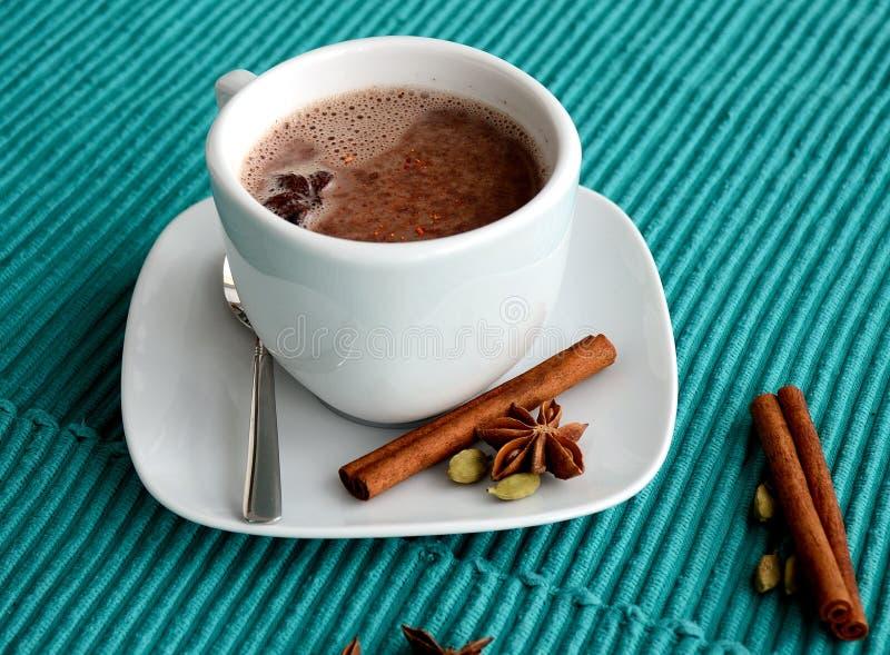 Varm kakaodrink royaltyfria bilder