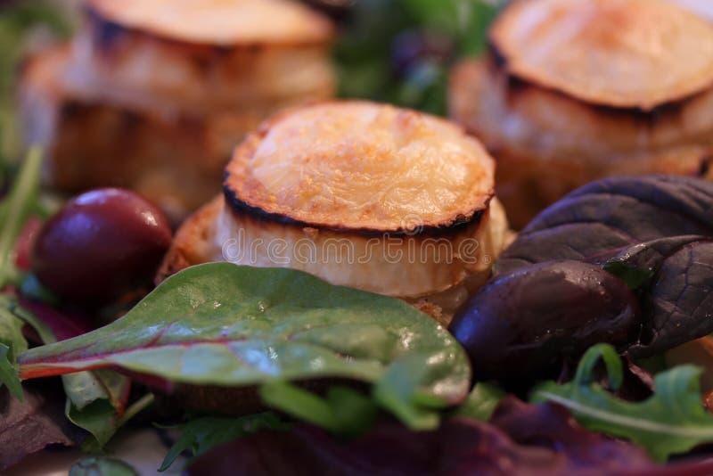 Varm ost för chevrechaudget som bakas på lantligt bröd med grön sallad och oliv Traditionell fransk maträtt i närbild arkivbild