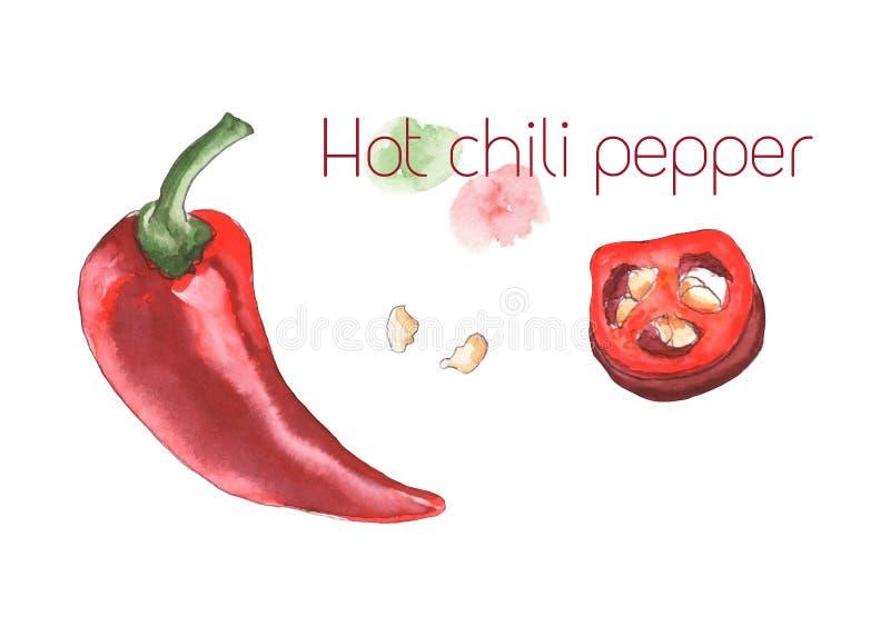 varm peppar för chili vektor illustrationer