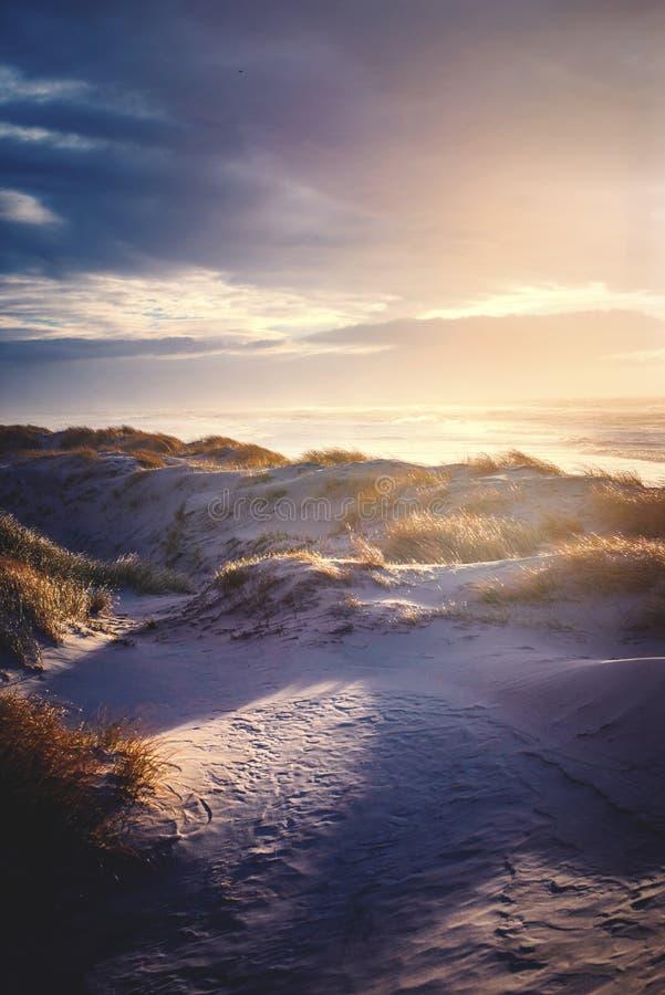 Varm solnedgång över de danska Nordsjödyerna arkivbild