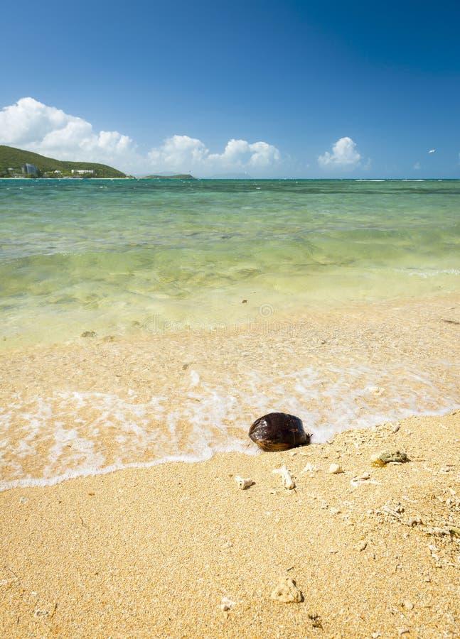 varm sommar för strand royaltyfria foton