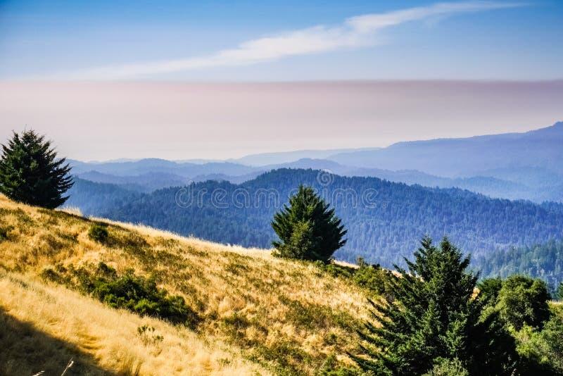 Varm sommardag med grå smog tidigt på morgonen, Santa Cruz berg, San Francisco Bay område, Kalifornien royaltyfri bild