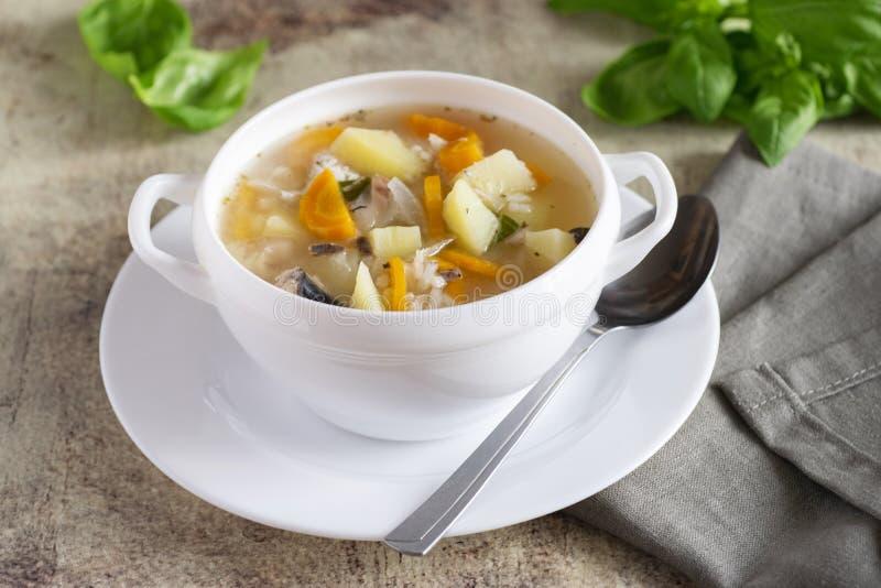 Varm soppa med fisken och grönsaker i den vita plattan med linneservetten på härlig bakgrund royaltyfri bild