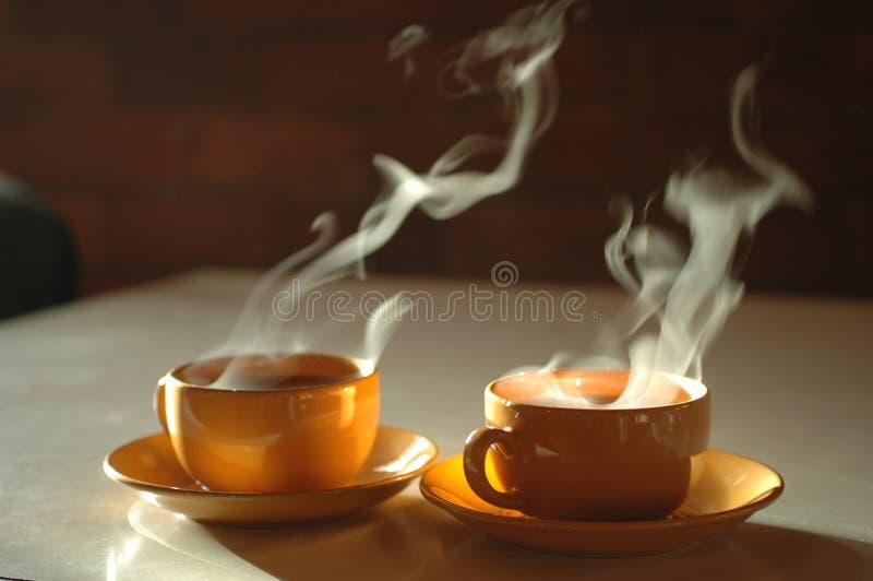 varm tea arkivfoton