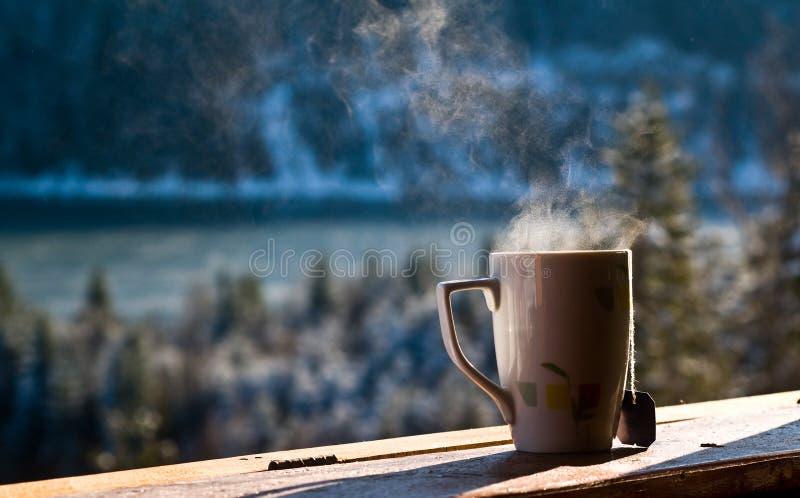 varm tea royaltyfria bilder