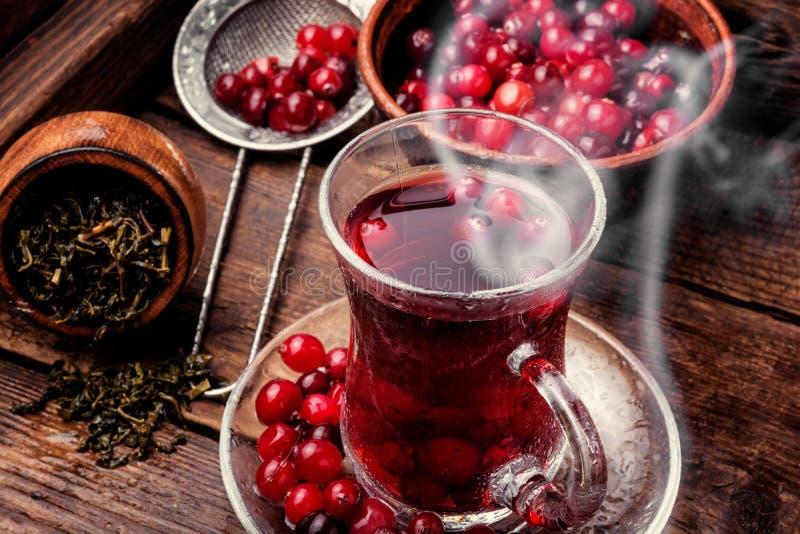 varm tea för kopp royaltyfri foto