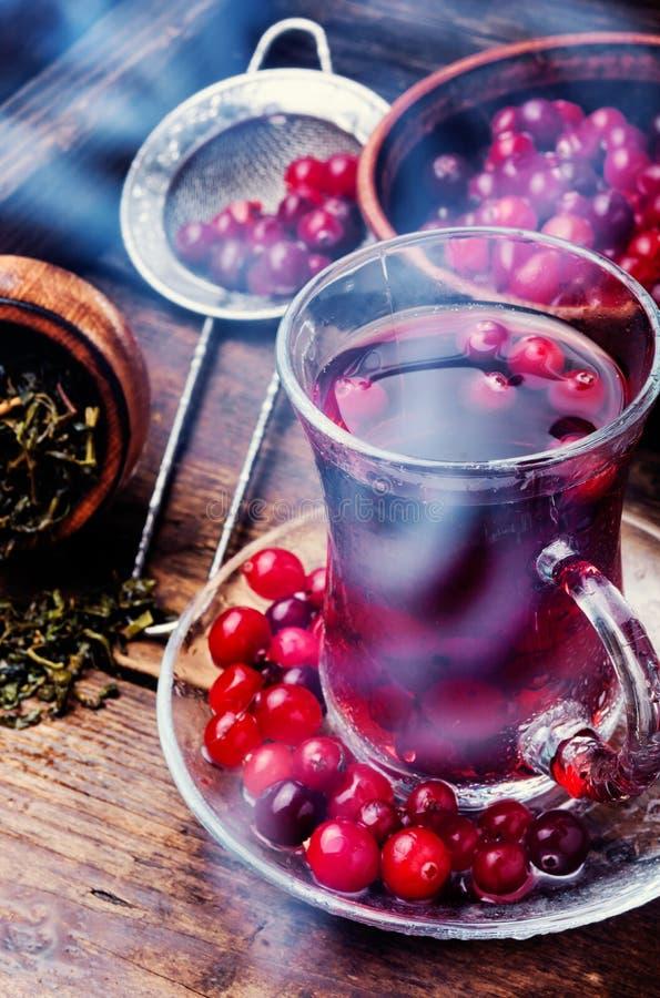 varm tea för kopp arkivbilder