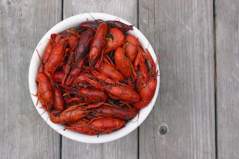 varma crawfish arkivfoto