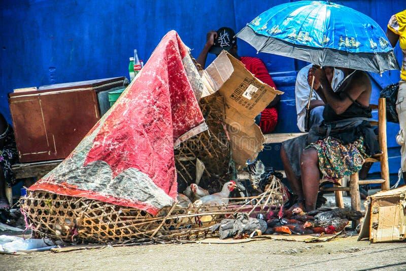 Varma hönor som är till salu i locket Haitien, Haiti royaltyfria bilder