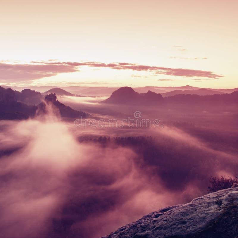 Varmt dimmigt höstland i röd färgrik dunst Stenig bergsklyfta mycket av tung dimma Solen döljas i färgrik mist royaltyfria foton