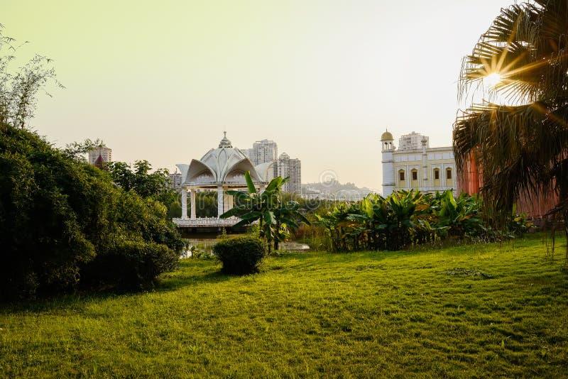 Varmt eftermiddagsolljus på gräsmatta och träd vid dammet i stad royaltyfri bild