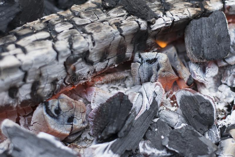 Varmt kol i gallret i trädgården royaltyfria foton