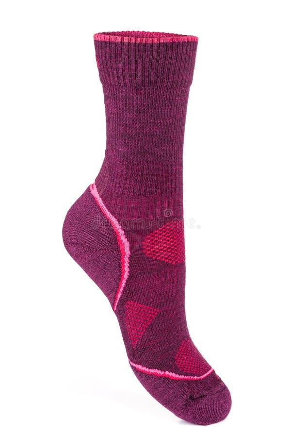 Varmt rosa, sportsocka royaltyfri fotografi