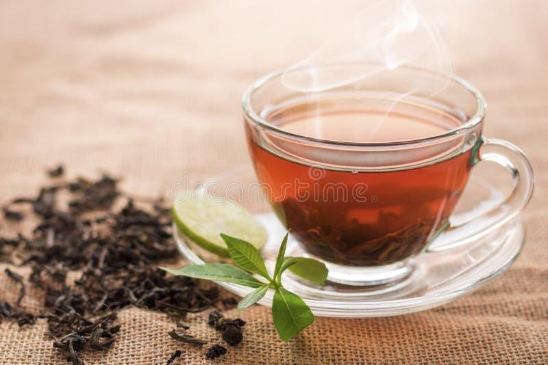 Varmt te av koppen med skivan av citronen royaltyfri foto