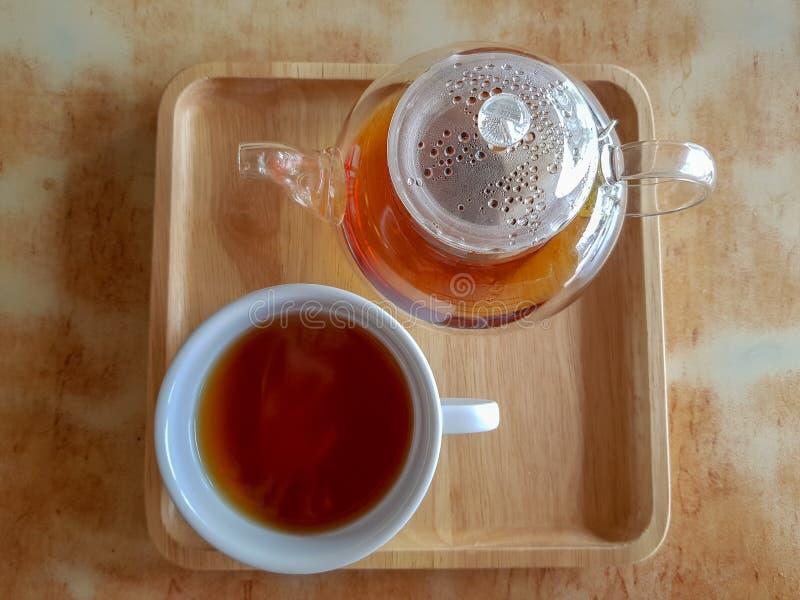 Varmt te bryggade i den genomskinliga klara glass kruka- och vitporslintekoppen royaltyfri foto