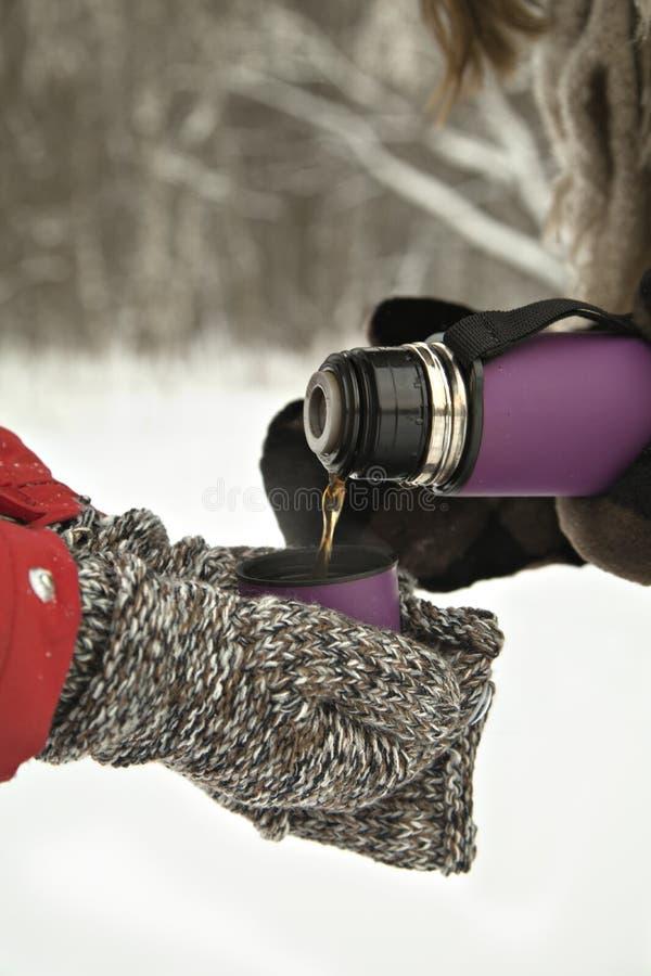 Varmt te i en termos i händer, i skogvintertid Ryssland vinter royaltyfri foto