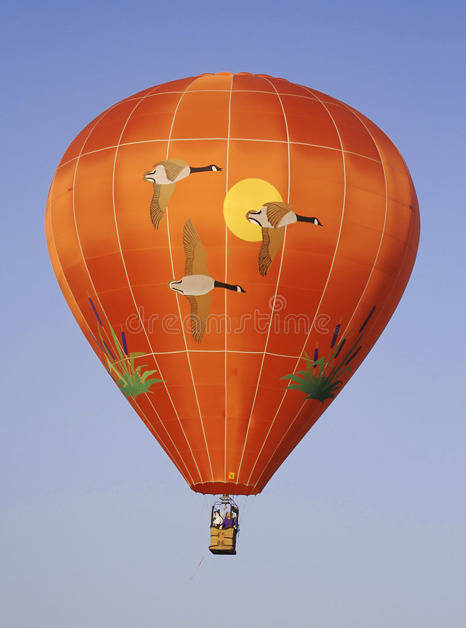 varmt themed för luftballonggås fotografering för bildbyråer