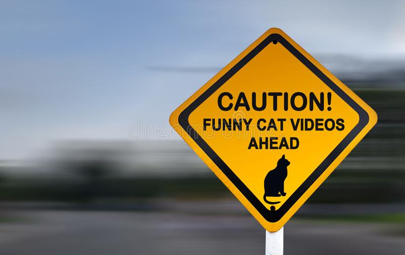 Varnande tecken för roliga kattvideo - roligt vägmärke arkivfoto