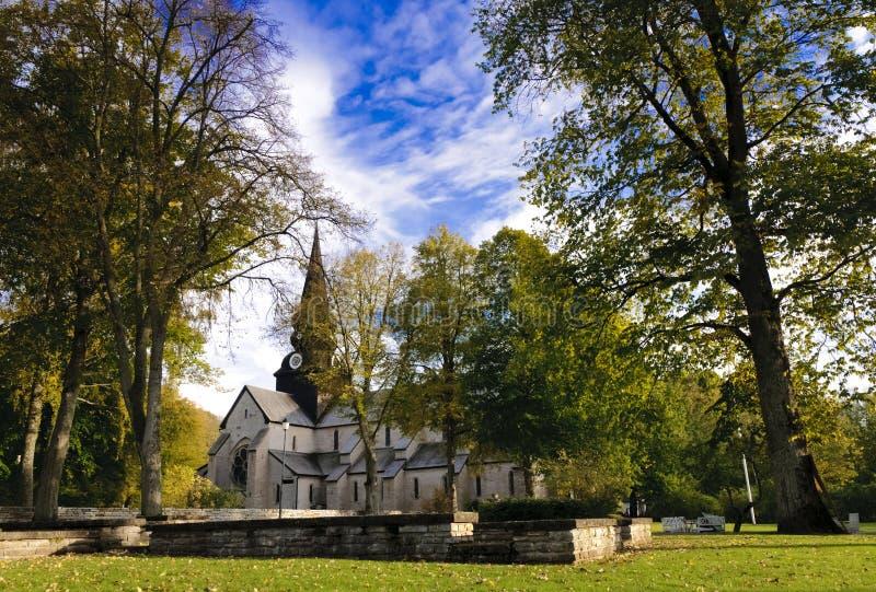 Varnhem,修道院在森林里 库存照片