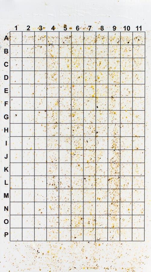 Varroa κολλώδης πίνακας ακαριών στοκ φωτογραφία με δικαίωμα ελεύθερης χρήσης