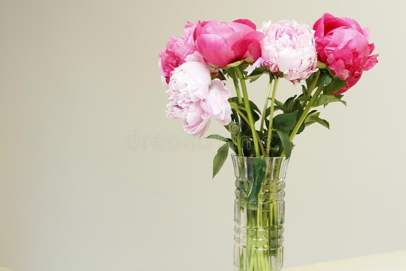Vas av rosa och röda pionblommor royaltyfri bild