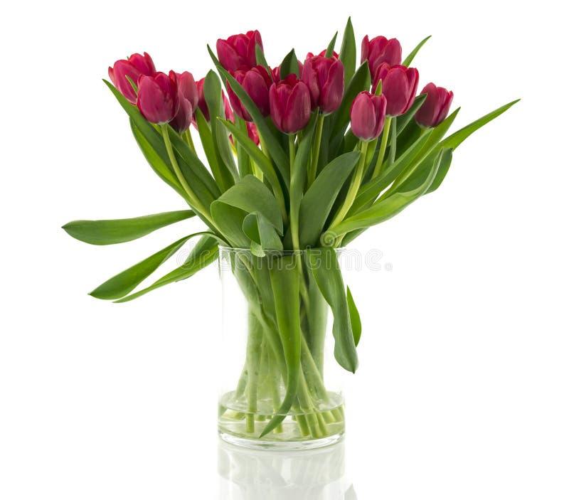 Vas med buketten av purpurfärgade röda tulpan royaltyfri foto
