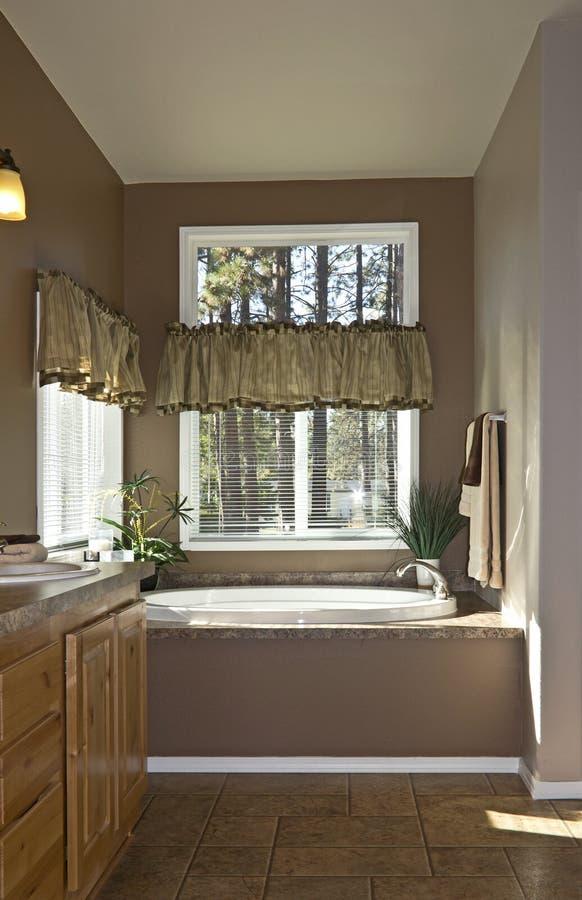 Vasca neutra moderna di ovale della stanza da bagno immagine stock libera da diritti
