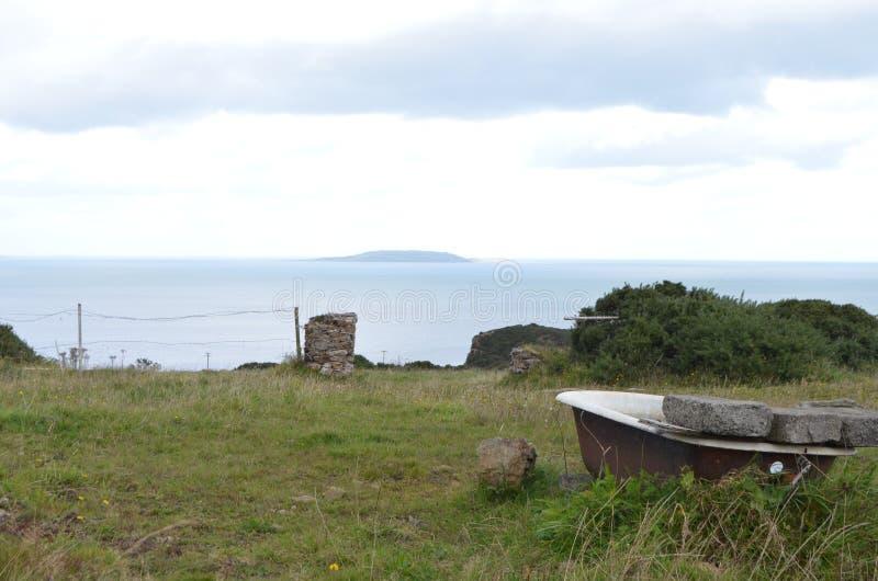Vasca in un campo rurale dalla costa di mare in Howth, Irlanda fotografia stock