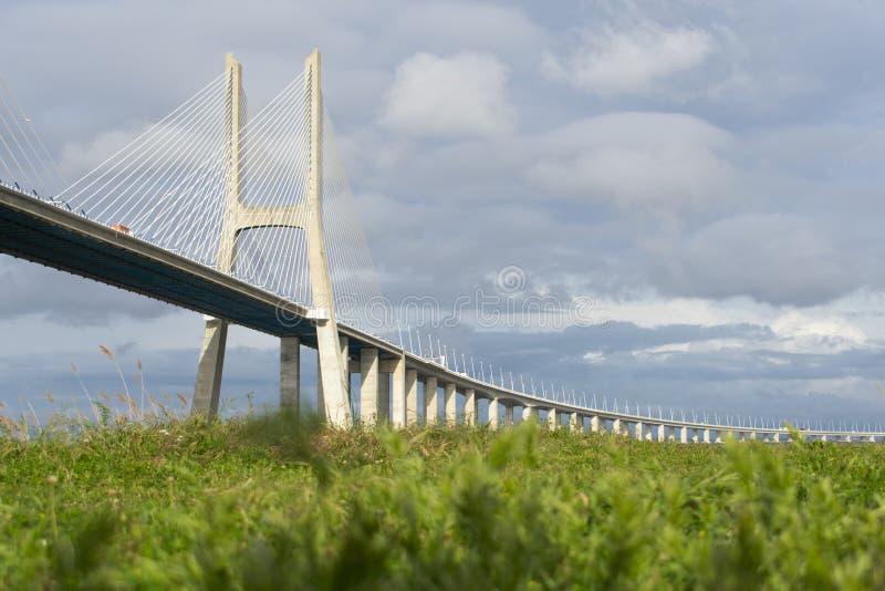 Vasco da Gama Bridge över ett grönt fält royaltyfria bilder