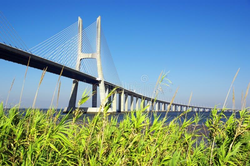 Download Vasco da Gama Bridge stock image. Image of engineering - 18413679