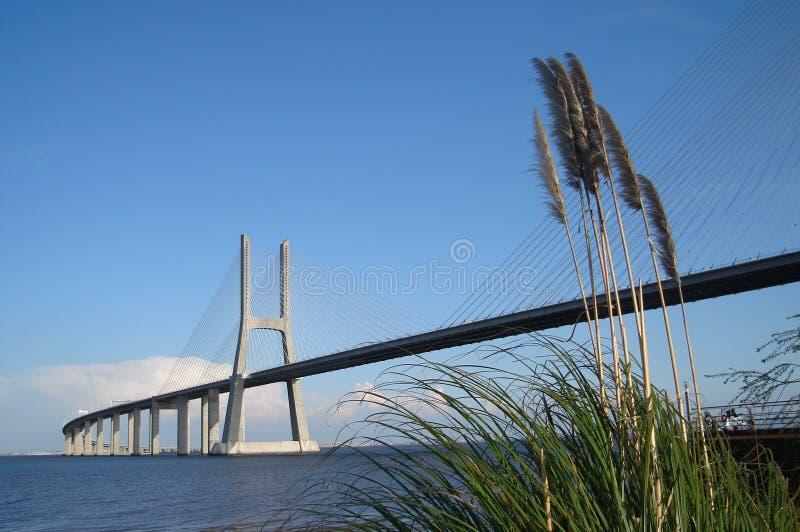 Download Vasco DA Gama-Lissabon-Portugal Stock Afbeelding - Afbeelding bestaande uit gama, architectuur: 10775065