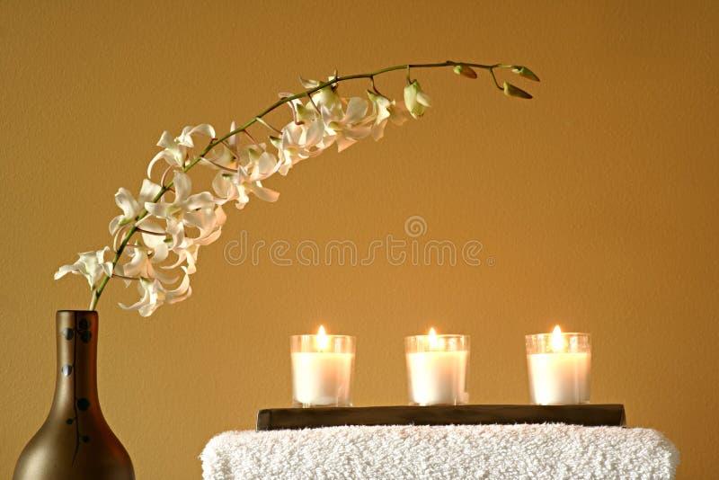 vase πετσετών λουλουδιών κ&e στοκ εικόνες με δικαίωμα ελεύθερης χρήσης