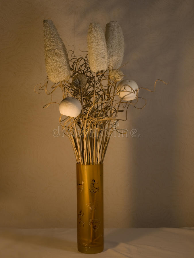 vase στοκ εικόνες