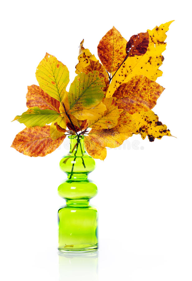 Download Vase with autumn bouquet stock image. Image of foliage - 25777969