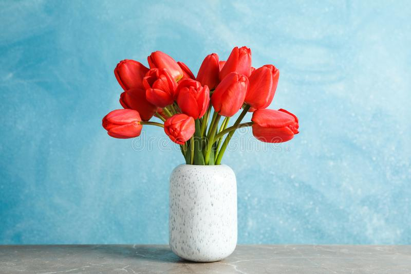 Vase avec de belles tulipes rouges sur la table sur le fond bleu image libre de droits