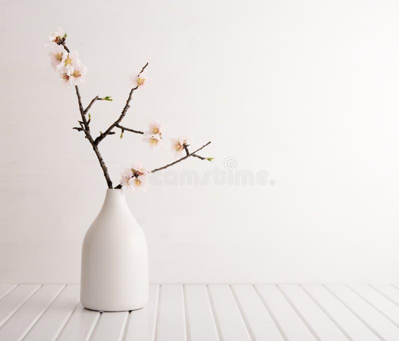 Vase avec des fleurs de cerisier images stock
