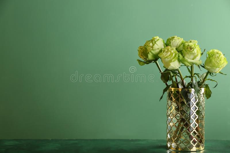 Vase with beautiful bouquet of green roses on table against color background stock photography