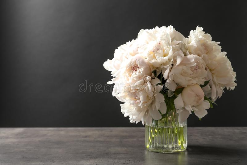 Vase with beautiful peonies on table against black background royalty free stock photography