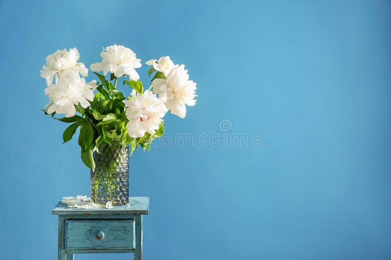 Vase with beautiful peony flowers on table against color background stock photo
