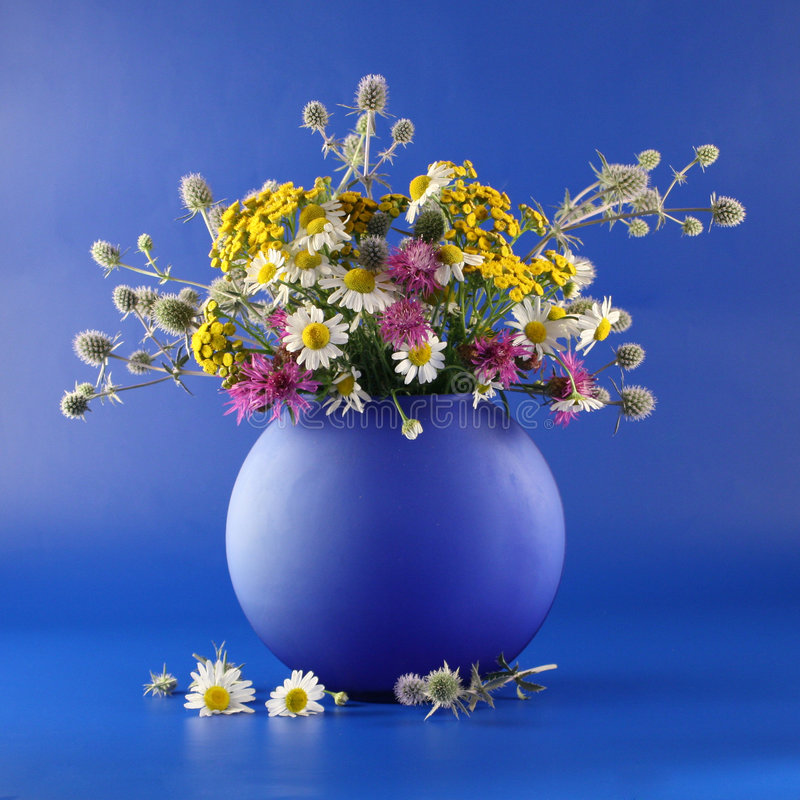 Download Vase with bouquet stock image. Image of nature, summer - 4549093