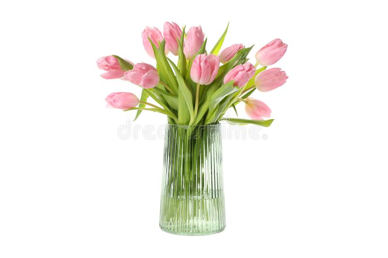 Vase with bouquet of pink tulips isolated on background royalty free stock photography