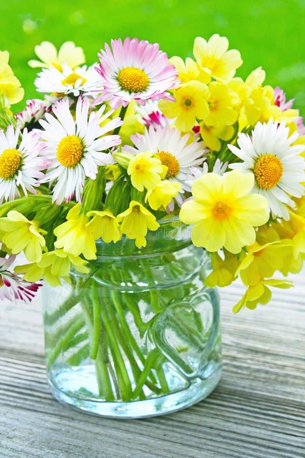 Vase de fleurs de ressort  images stock